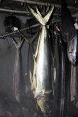 На местном рыбзаводе рыбу сразу же коптят