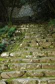 Одна из многочисленных лестниц на территории замка