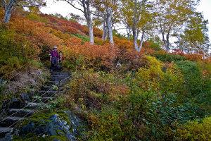 Японские пенсионеры-туристы спускаются с гор