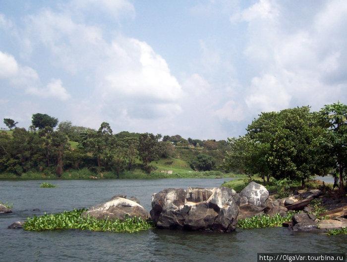 Исток Нила