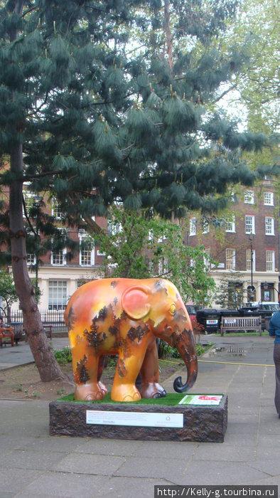 Слоник на площади Сохо