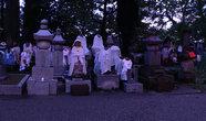 Раннее утро на кладбище.