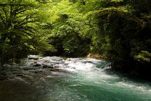 Именно благодаря этой речке, её проточной холодной воде, существует хозяйство