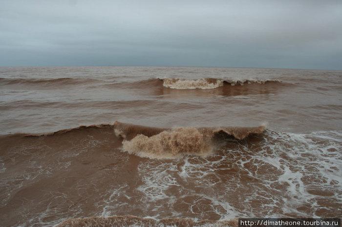 таким я и увидел океан: замутненным водой из ближайших рек с доброй примесью суглинка, цвета мореного дуба, на фоне которого кокетливо смотрелись раскиданные по волнам рюшечки пены цвета кофейной гущи