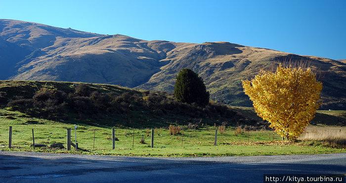 От Те-Анау до Квинстауна Квинстаун, Новая Зеландия