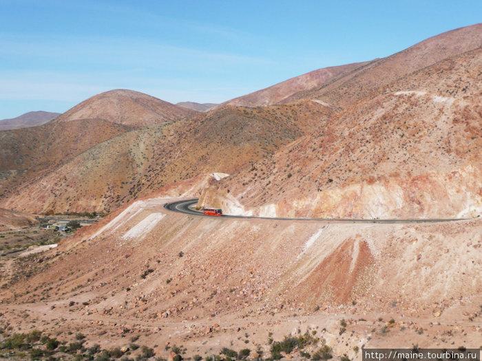 Из Ла-Серены на север начинается пустыня Атакама,где крайне редко бывают дожди.