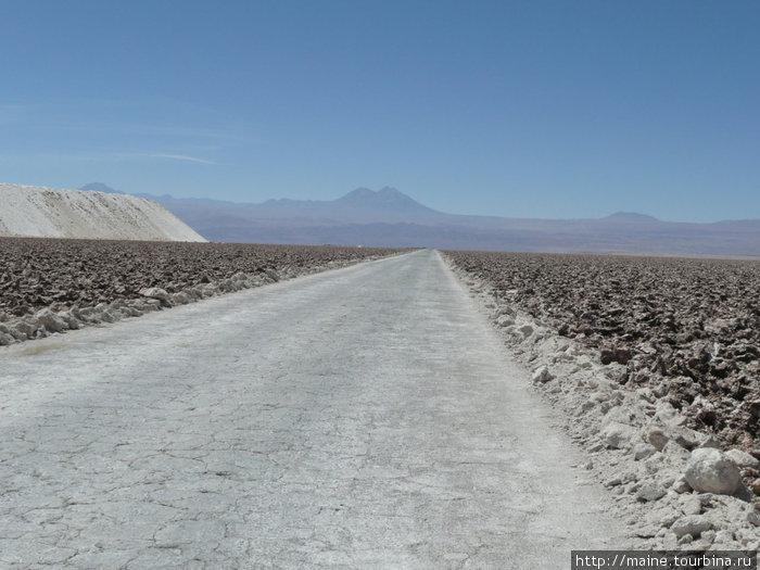 Из Антофагасты мы взяли путь на Сан Педро де Атакама через соляную долину,по которой проехали более 200 км.