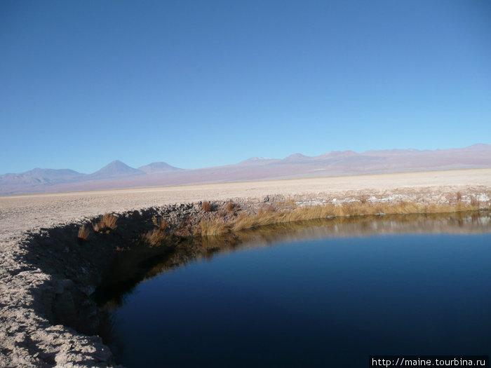 То и дело к Востоку от Сан Педро де Атакама мы находили вот такие озера.С десяток км нужно было ехать по жуткой песочной дороге,где было очень легко застрять и без малейшего понятия где искать помощь.
