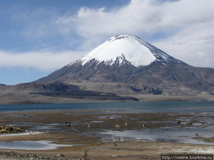Вулкан Паринакота 6,633м. и лагуна Чунгора 4,400.По вулкану проходит граница с Боливией.