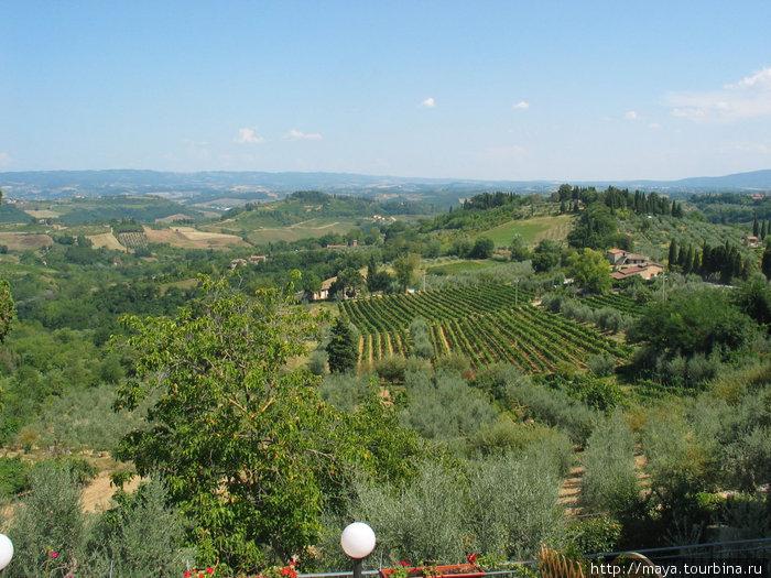 С высоты 343 метра любуемся на окрестные леса и виноградники.