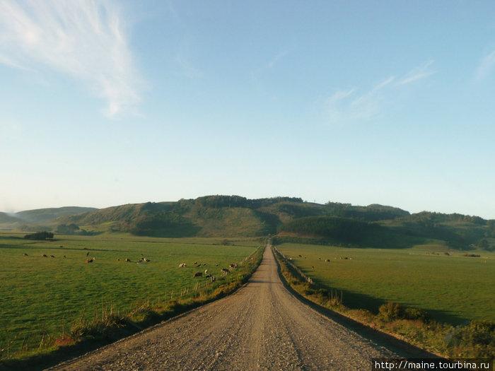 Чилийские просторы.Какая это прекрасная и красивая страна.