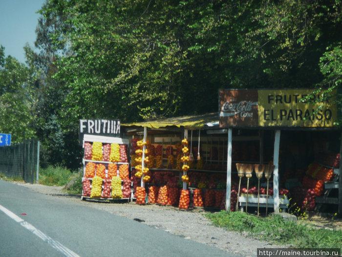 Такие стенды мы часто встречали к югу от Сантьяго.Большой мешок апельсин,лимонов стоил три дол.У нас багажник был набит сельским сыром 1кг за 4 дол.,копченой рыбой- семгой -упаковка 3 долл.