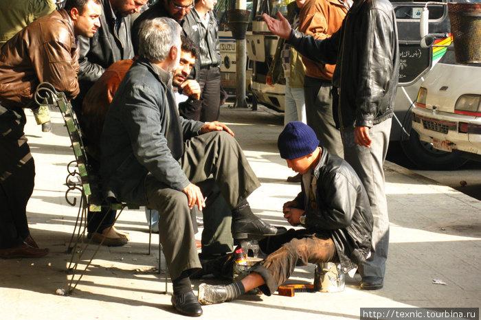 На автовокзале в Хомсе