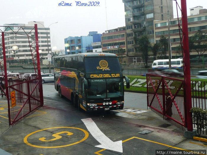 Автобус люкс-класса. Внизу 12 спальных кресел.На ахвтобусах этой компании можно доехать до Буенас Айрес Аргентина.