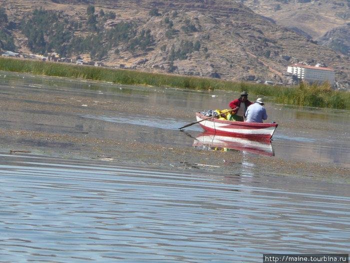 На Титикака на веслах в основном женщины.Мужщины вяжут или думают в это время,как жить дальше.
