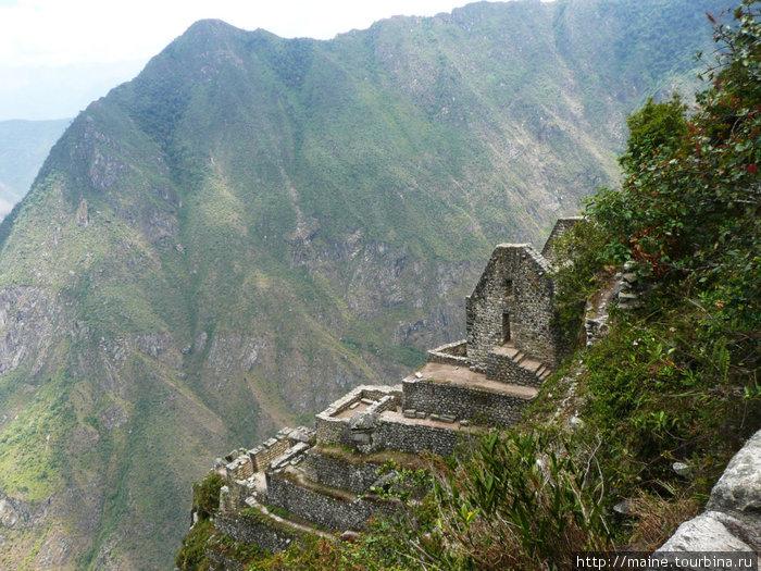 Строения на Waynapicchu 2,750м. Эта гора очень отвесная.Как здесь строили,брали воду и жили-это загадка.