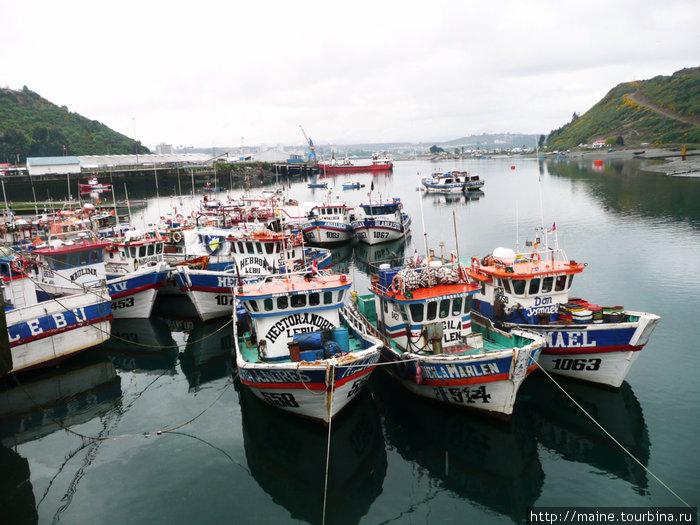 Рыбацкие лодки рядом с рыбным рынком в Пуерто -Мотт.Продавец,когда я вытащил кошелек, посоветовал немедленно спрятать,хотя на рынке  подозрительных на вид людей не было видно.