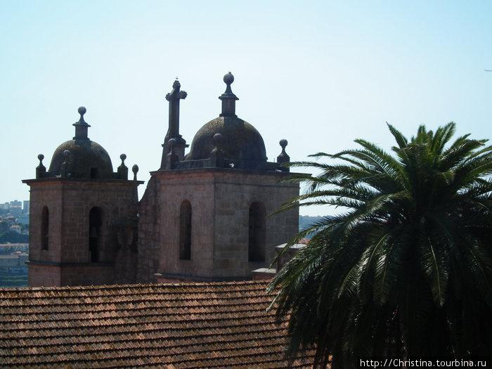 Черепичные крыши + мануэлино + пальма = фото о Порту ;-)