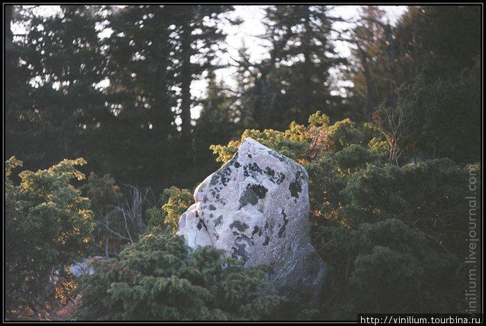 Кварцит — основная порода камней и скал Южного Урала.