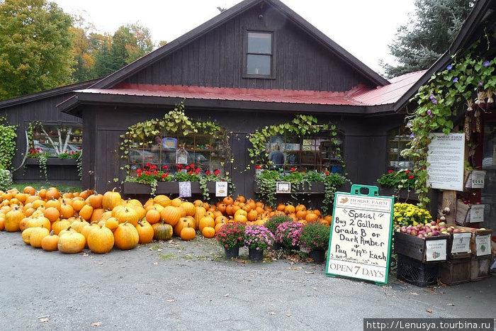 Вермонт штат сша недвижимость цена