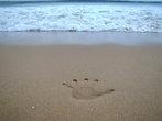 отпечаток руки на память об побережье Индийского океана