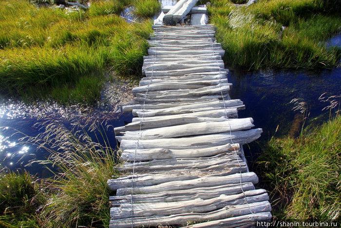 Мир без виз — 125. У знаменитой горы Лос-Гласьярес Национальный парк, Аргентина