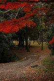 В парке замка Уэно
