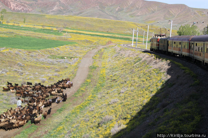 Поезд Табриз — Жолфа