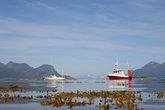 Фьорды — райское место для рыбака, горы закрывают от ветра и волн