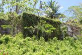 Весь заросший зеленью, абсолютно весь... Когда то в этом доме жили счастливо