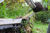 На руле трава, на крыше муравейник