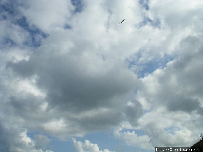 Небо Этреты