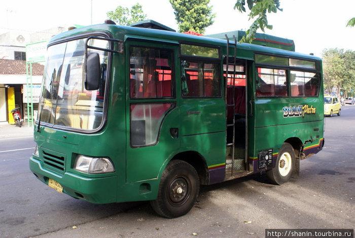 Городской автобус Денпасар, Индонезия