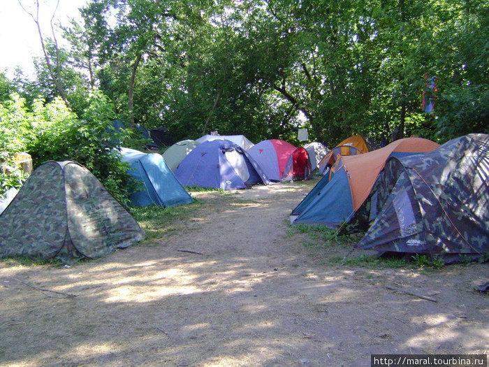 Лагерь археологов на Усть-Шексне