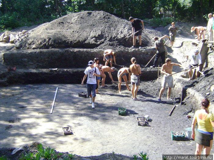 Из этого раскопа извлечены археологические шедевры