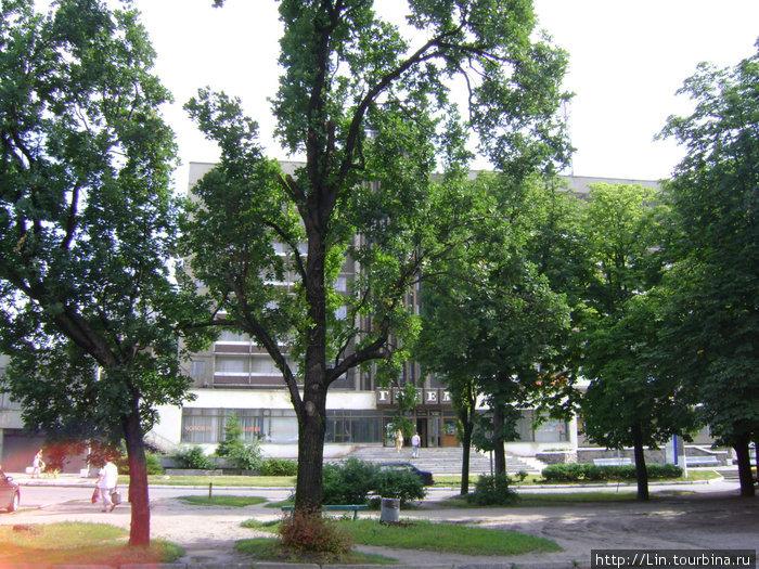 отель виднеется за деревьями