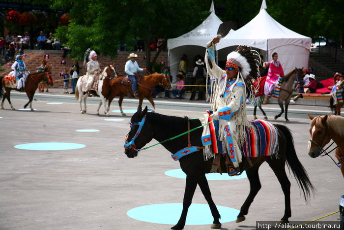 Этот парень был в тёмных очках, но они по цвету гармонировали со сбруей на его лошади;)