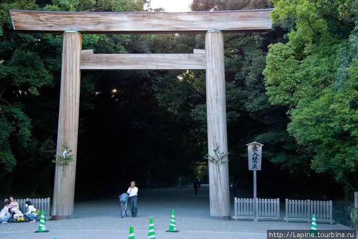 Тории храма Ацута