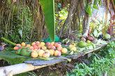 Фрукты... Самые вкусные манго я встретил именно на Доминике, на Карибской территории