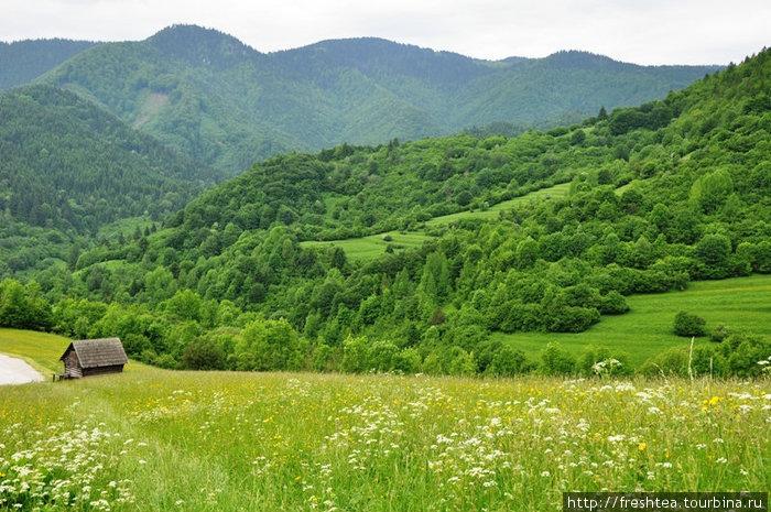 Жилинский край (Средняя Словакия) известен своими пасторальными пейзажами. Он лежит в предгорьях северных Карпат (высота более 700 м над ур.моря). Сюда, к старинным деревням ведут туристические тропы.