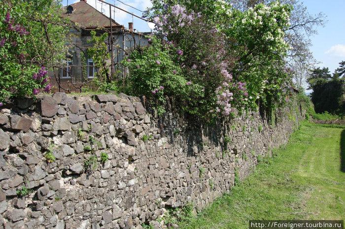 Ров вокруг Ужгородского замка