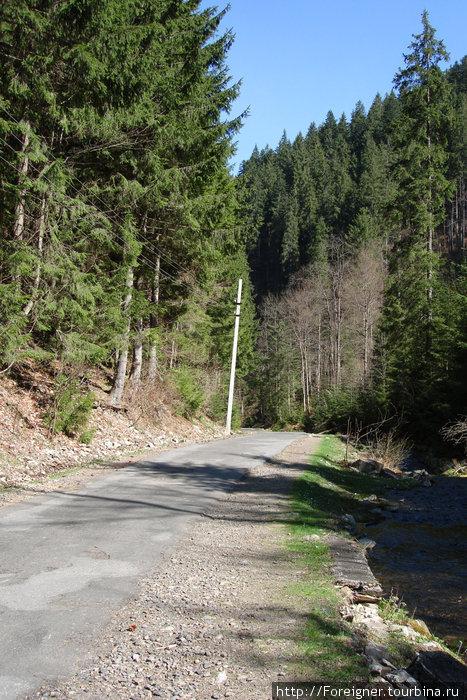 Дорога вверх на Синевирское озеро