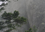 Туман на Двуглавой сопке