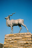 Памятник зверю