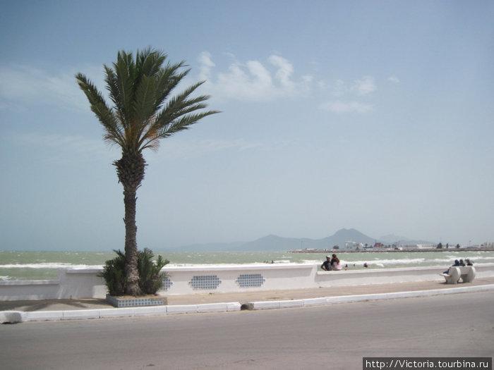 Галопом по Европам, ч.12 Тунис Ла-Гулетт, Тунис