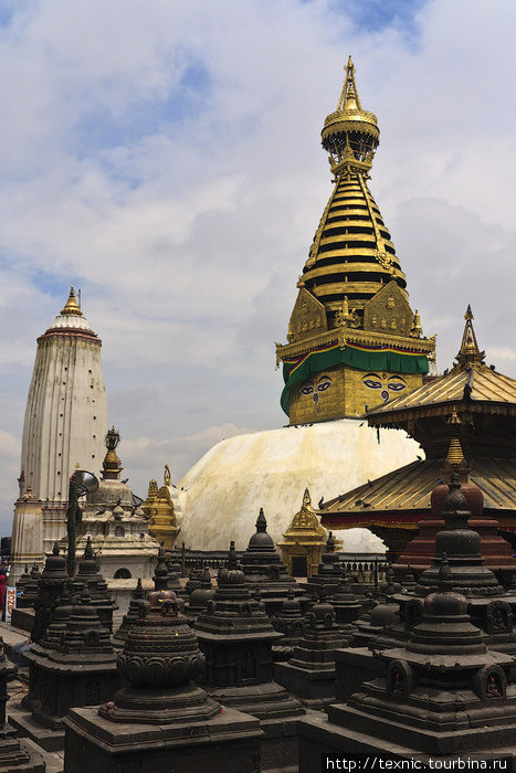 Monkey Temple