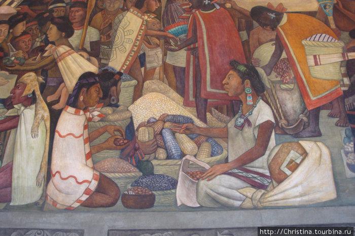 Одна из фресок. Бартер ацтеков. Кукуруза, фасоль и др. культуры. Ацтеки были практически вегетарианцы. Скот в Мексику завезли испанцы!