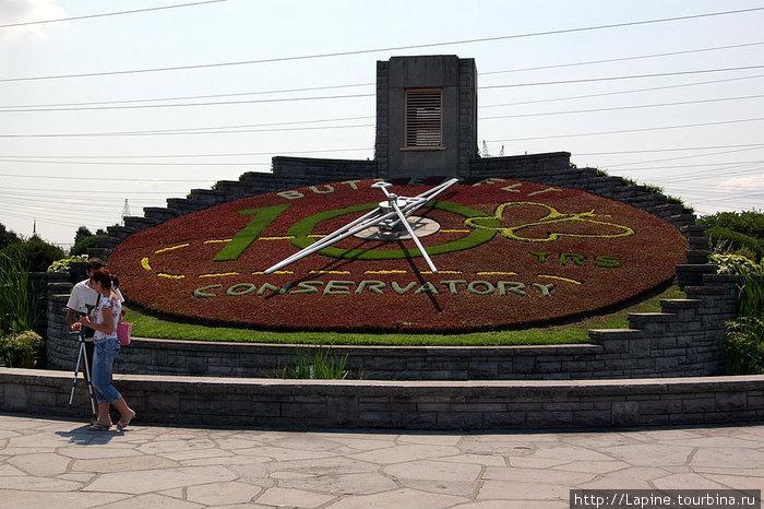 Цветочныe часы (Floral Clock)