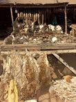 Рынок фетишей в Ломе