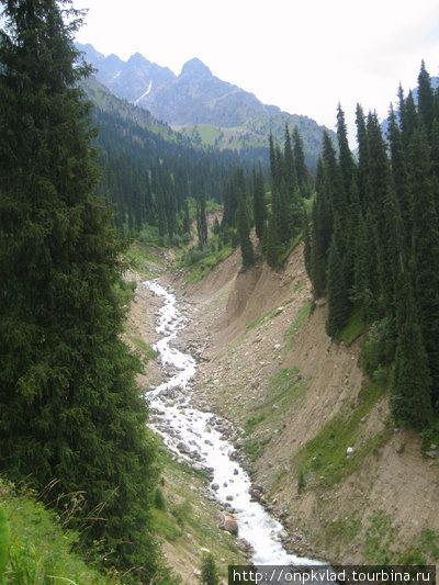Горная речка во всей своей красе. Авторская фотография.